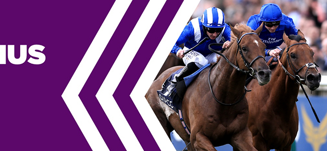 Betdaq bookie's horse racing bonus jointly with ITV!