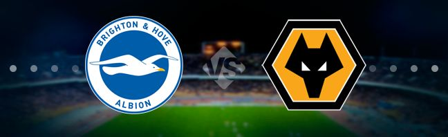 Brighton vs Wolverhampton Prediction 8 December 2019